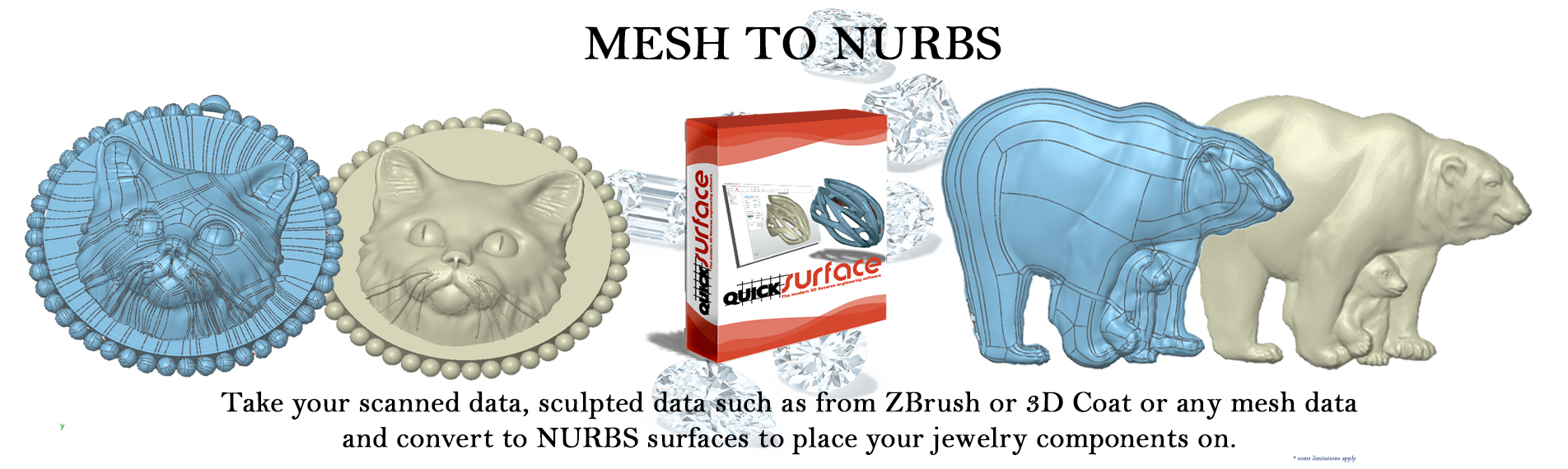 mesh to nerbs